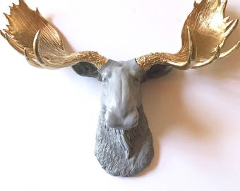 Faux Taxidermy Moose Head wall mount in MEDIUM GRAY with GOLD Antlers / mounted moose / faux taxidermie / moose wall mount farm house decor