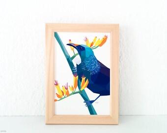 Tui print, Tui wall art, Native New Zealand birds, New Zealand art, Kiwiana, Geometric bird, Kiwi, NZ artist, New Zealand postcard, Tui card