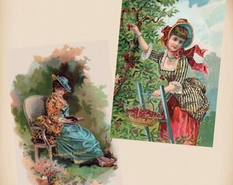 Victorian Lady - Book - Cherries - 2 New 4x6 Antique Image Photo Prints TC21-43