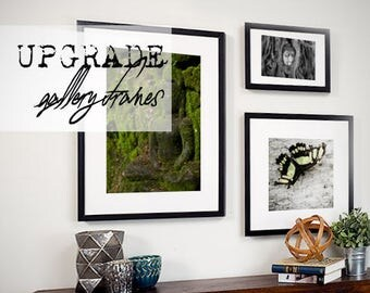 UPGRADE | Gallery Frame | Ready-to-Hang | Lost On Purpose Photography