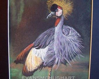 Crowned Crane Original Bird Pastel Painting Yorkshire Art 9 x 11.5 inches Christine Evans McHugh