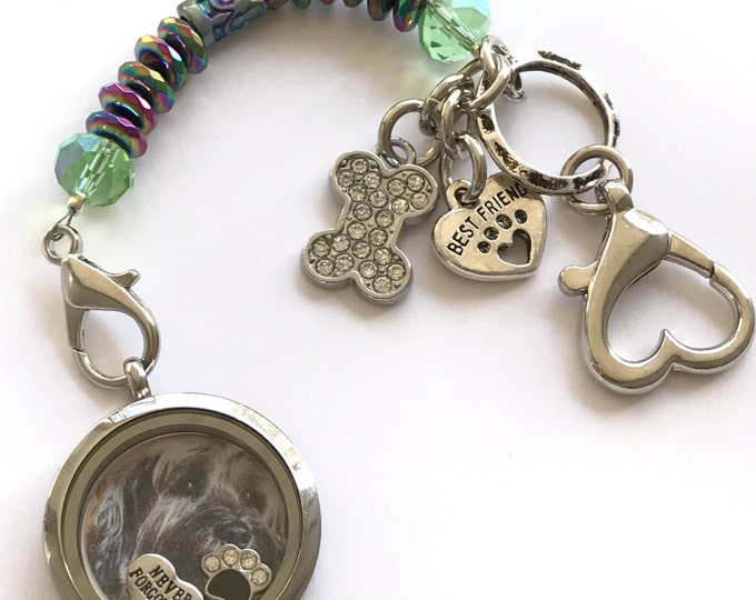 Rainbow bridge pet loss picture floating locket keychain ~ purse FOB