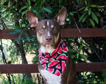 Watermelon Tie Dog Bandana - Pet accessories - Pet supplies