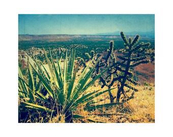Nature Photography, Desert Photography, Large Cactus Art, New Mexico Art, Vintage Landscape Photography, Cactus Photography Southwestern Art