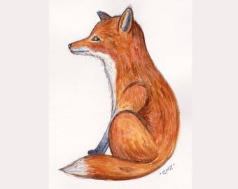 Felix Fox - Original Watercolour Illustration