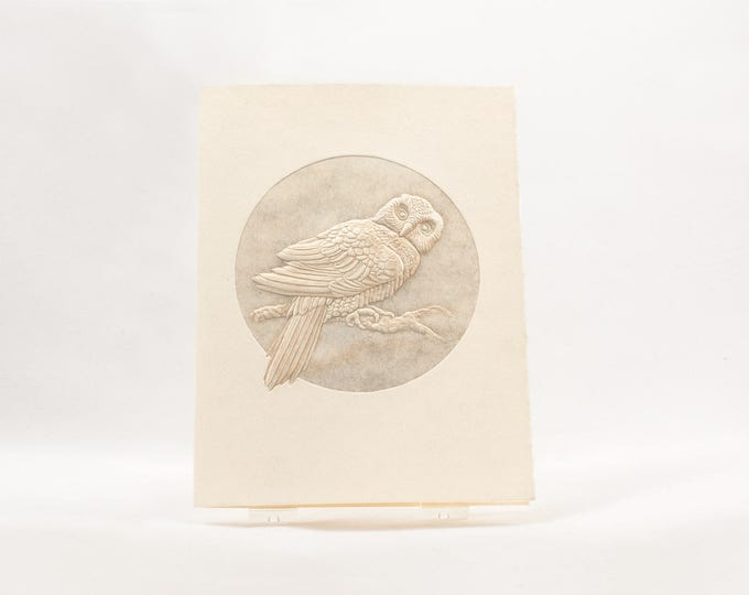 Hawk Owl Card. Bird Card. Wildlife card. Embossed Owl card. Nature card. Single card. Blank inside.