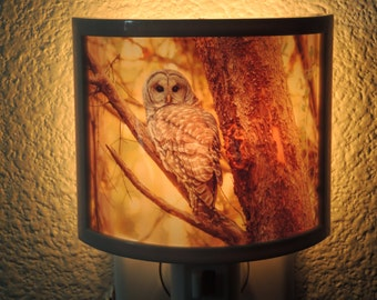Owl Night Light - Wildlife Decor - a rustic addition for your cabin or cottage