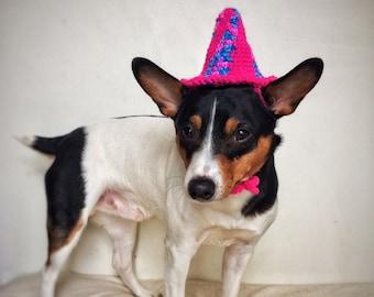 Crochet Birthday Cap Cat Dog Hat Unique Handmade Pink Blue Pet Accessories