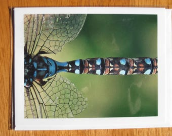 Dragonfly close up photo note card