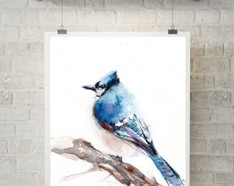 Blue Jay bird print, Watercolor Painting of bird, bird fine art print, bird watercolor print, wall art