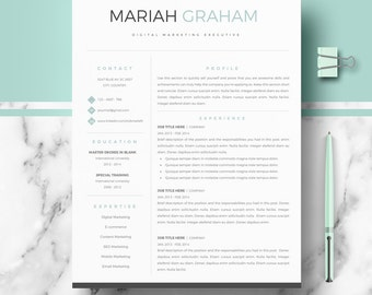 Professional Resume Template | Resume Template for Word | CV Template + Cover Letter & References + Resume Writing guide | Instant Download
