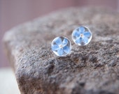 Real flower jewelry | Forget me not Flower Earrings | Flower stud earrings | Real flowers earring | Forget me not studs earring 925 silver