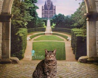 4ft.x4ft. Castle in the Background- Princess Castle Backdrop, Vinyl Photography Backdrop, Backdrops, Peek Prints