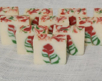Indian Paintbrush - Handmade Artisinal Soap