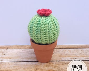"Crochet Cactus - 2.5"" Pot - Made to Order"