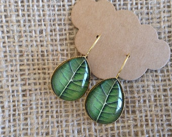 Leaf Photo Cabochon Teardrop Earrings