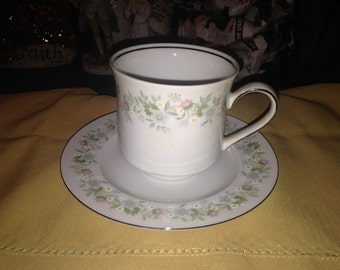 Johann Haviland Bavaria Tea Cup & Saucer