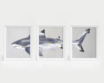 Black Tip Reef Shark Art Poster, Baby Boy Nursery Decor, Shark nursery Wall Art, Shark Print, Set of Three, 3 Print Set, Shark Triptych Art