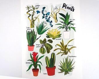 Plants Nature Print
