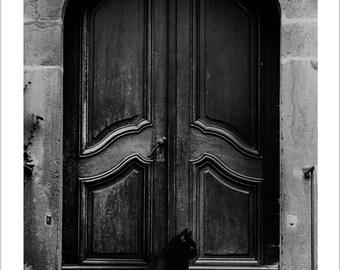 The black cat's door
