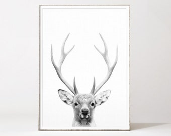 Deer head, deer print, deer antlers, deer wall art, tete de cerf, deer wall decor, deer poster, deer antler print, black and white deer art