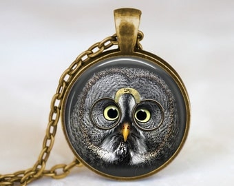 Silver Grey Owl with Quevedos Glasses - Steampunk Handmade Pendant Necklace