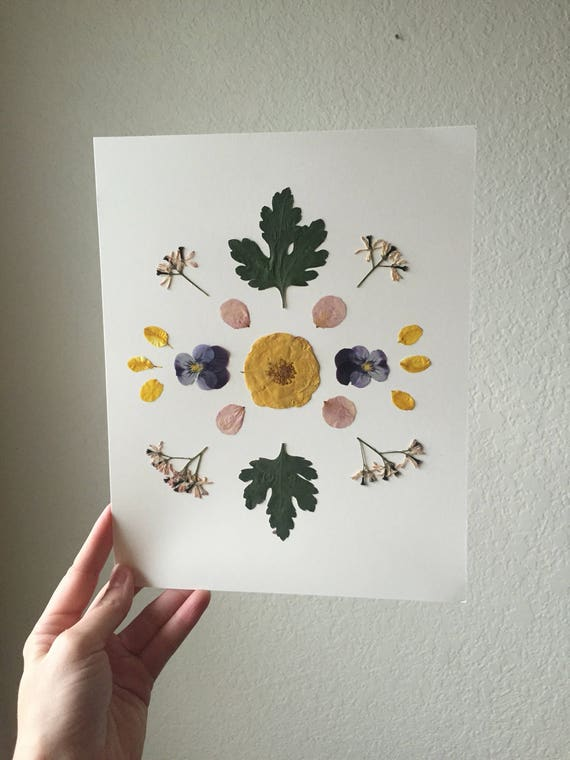 Flower Mandala Herbarium 8x10 - Pansy & Rose Botanical Art - Yellow, Pink and Green- Framed Flower Art- Specimen Art- Botanical Poster