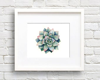 Succulent - Art Print - Plant Wall Decor - Watercolor Painting