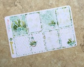 SUCCCULENT Box Set Planner Stickers for use with inkWELL Press Planners   Vertical & Horizontal   LucKaty