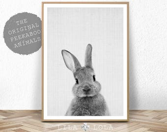 Rabbit Print, Baby Animal Prints, Woodland Nursery Decor, Bunny Wall Art Print, Large Printable Poster, Digital Download, Black and White