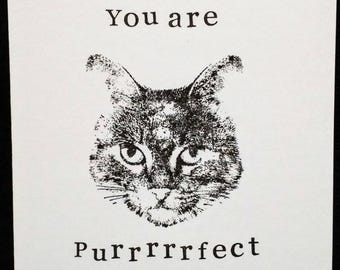 You are purrrfect! Handstamped, handmade CAT card