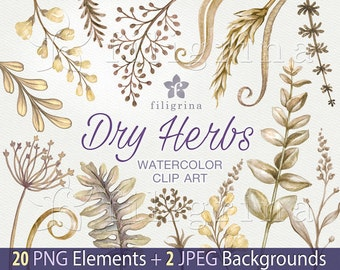 Dry HERBS WATERCOLOR Clip Art. Rustic grass, leaves, flowers, rye, robust, meadow, wild, autumn nature, forest, boho. 20 png + 2 backgrounds