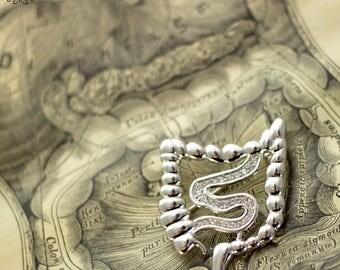 Intestines Brooch-Gastroenterology Gift-Biology Jewellery-Medical Jewellery-Medical Gift-Gift for Doctor-Gift for Nurse-Medical Intern Gift