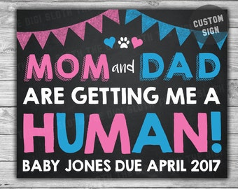 Cat Big Sister Shirts Mom And Dad Getting Me Human