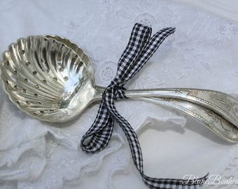Condiment spoons, silver plated (Scotia)