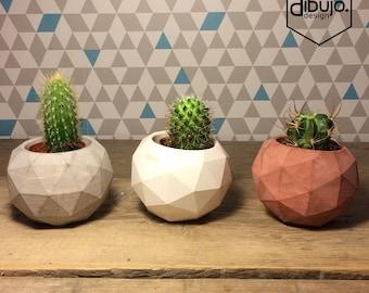 Small Concrete Pots