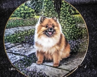 Pomeranian Decorative Plates by Barbara Higgins Bond  Limited Edition  PreOwned Excellent Condition