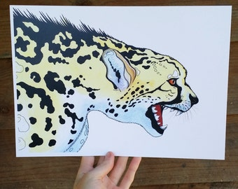 Cheetah big cat gloss print