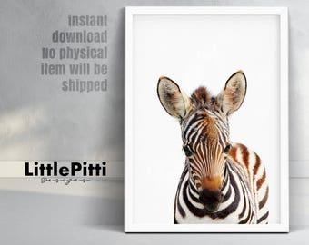 Safari nursery decor, zebra print, baby zebra, african animals, safari animal wall art, kids safari poster, babies room decor, digital print