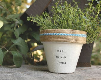 """4"""" Hammer Thyme » Thyme Plant Indoor and Outdoor Pot or Planter"""