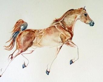 Trotting Chestnut Arabian Giclee Print