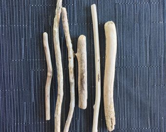 6 small and thin branches of driftwood - wood branches, seawood, driftwood
