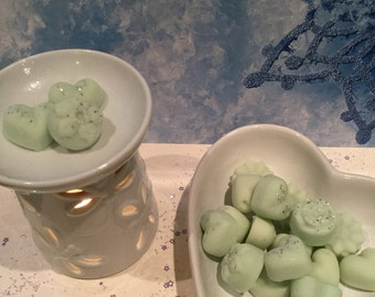 Sinus Relief - Highly Fragranced Soy Wax Melts