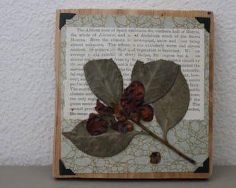 Mixed Media Botanical Garden Art