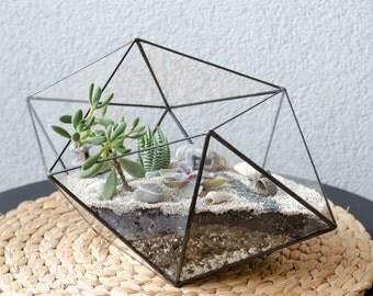 Terrarium Unusual Form