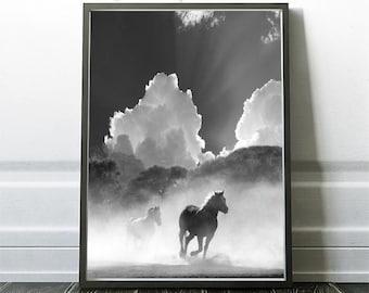 Horse photo Print, Black and White Photography, Horse Print Wall Art, Wild Horse Photo, Wilderness Print, Equestrian, Printable Art, Digital