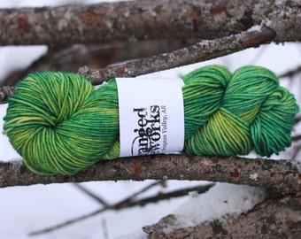 Reserve for Jenna- Frogstomp  - 100% Superwash Merino Wool Yarn - Worsted Weight