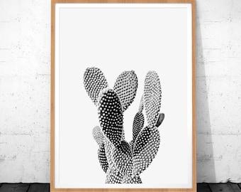 Cactus Print, Cactus Wall Art, Cactus Printable Art, Cactus Photo, Cactus Wall Print, Cactus Decor, Plant Print, Desert Art, Desert Print