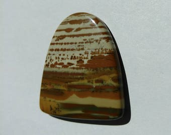 Large Owyhee Picture Jasper Cabochon