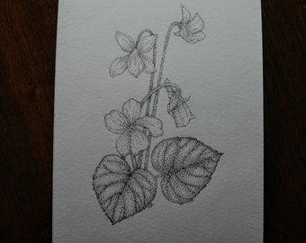 Violets original pen and ink